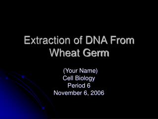 Extraction of DNA From Wheat Germ