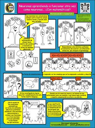 N euronas aprendiendo a funcionar otra vez como neuronas... ¿Con matemáticas?.