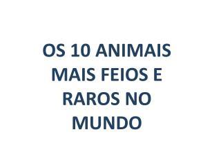 OS 10 ANIMAIS MAIS FEIOS E RAROS NO MUNDO