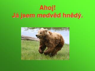 Ahoj J  jsem medved hned .