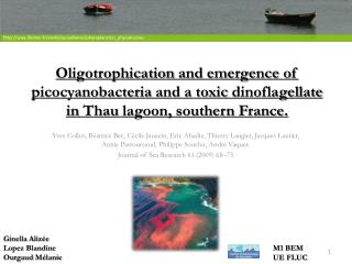 Oligotrophication and emergence of picocyanobacteria and a toxic dinoflagellate in Thau lagoon, southern France.