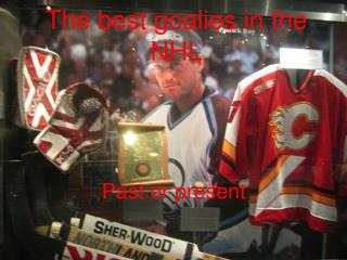 The best goalies in the NHL