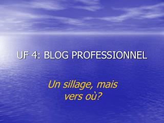UF 4: BLOG PROFESSIONNEL