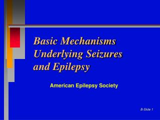 Basic Mechanisms Underlying Seizures  and Epilepsy
