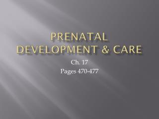Prenatal Development & Care