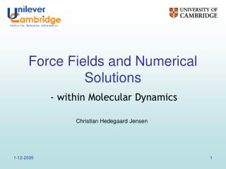 Force Fields and Numerical Solutions