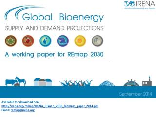 Available for download here:  irena/remap/IRENA_REmap_2030_Biomass_paper_2014.pdf