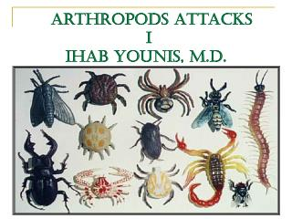 Arthropods Attacks  I IHAB YOUNIS, M.D.