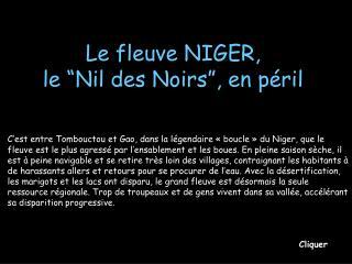 """Le fleuve NIGER, le """"Nil des Noirs"""", en péril"""