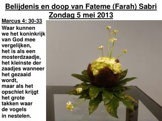 Belijdenis en doop van Fateme (Farah) Sabri Zondag 5 mei 2013