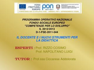 IL DOCENTE E I NUOVI STRUMENTI PER LA DIDATTICA ESPERTI :  Prof. RIZZO COSIMO