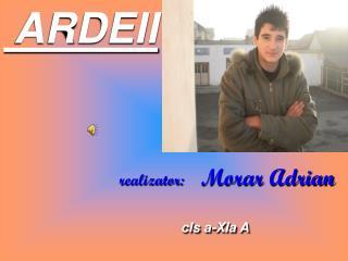 ARDEII           realizator : Morar  Adrian cls  a- XIa  A