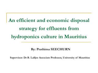 An efficient and economic disposal strategy for effluents from hydroponics culture in Mauritius
