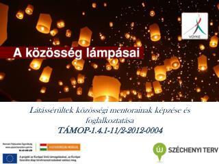 L�t�ss�r�ltek  k�z�ss�gi mentorainak k�pz�se �s foglalkoztat�sa T�MOP-1.4.1-11/2-2012-0004
