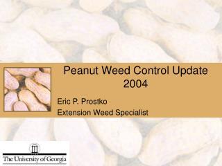 Peanut Weed Control Update 2004