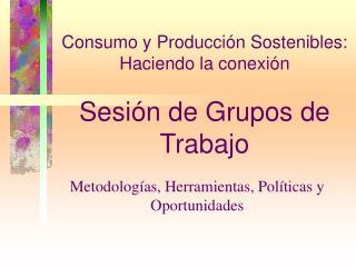 Consumo y Producción Sostenibles: Haciendo la cone x ión Sesión de Grupos de Trabajo