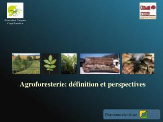 Agroforesterie: définition et perspectives