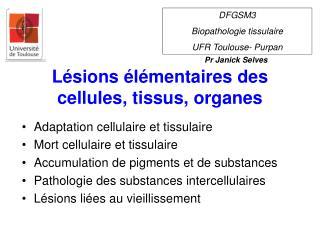 Lésions élémentaires des cellules, tissus, organes