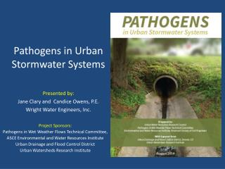 Pathogens in Urban Stormwater Systems