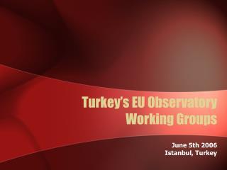 Turkey's EU Observatory Working Groups