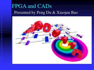 FPGA and CADs