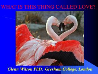 Glenn Wilson PhD,  Gresham College, London
