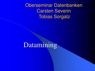 Oberseminar Datenbanken Carsten Severin   Tobias Sorgatz