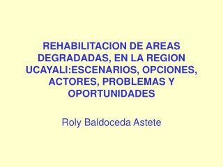 Roly Baldoceda Astete
