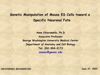 Genetic Manipulation of Mouse ES Cells toward a Specific Neuronal Fate