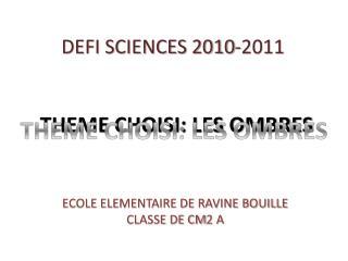 DEFI SCIENCES 2010-2011