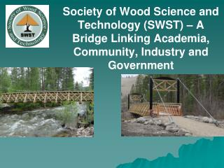 OUR VISION : To be the world leader in advancing the profession of wood science.