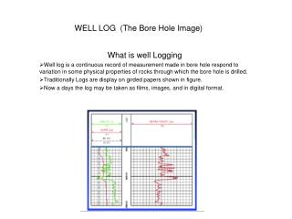 WELL LOG  (The Bore Hole Image)