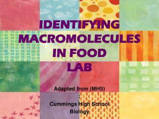 IDENTIFYING MACROMOLECULES IN FOOD LAB