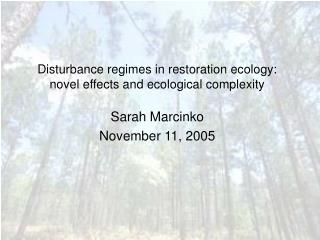 Disturbance regimes in restoration ecology: novel effects and ecological complexity