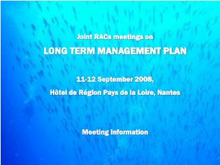 Joint RACs meetings on LONG TERM MANAGEMENT PLAN 11-12 September 2008,