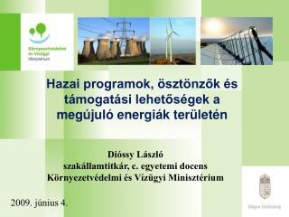Hazai programok, ösztönzők és támogatási lehetőségek a megújuló energiák területén