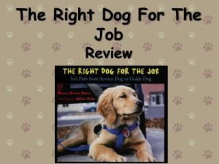 The Right Dog For The Job Review