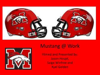 Mustang @ Work