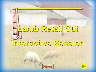 Lamb Retail Cut Interactive Session