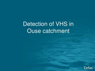 Detection of VHS in  Ouse catchment