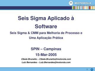 Seis Sigma Aplicado   Software Seis Sigma  CMM para Melhoria de Processo e Uma Aplica  o Pr tica  SPIN   Campinas 15-Mar