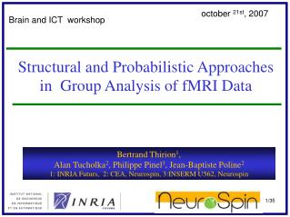 Structural and Probabilistic Approaches in  Group Analysis of fMRI Data