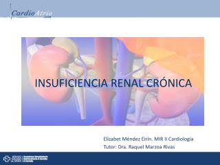 INSUFICIENCIA RENAL CR�NICA