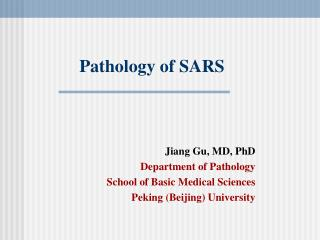 Pathology of SARS