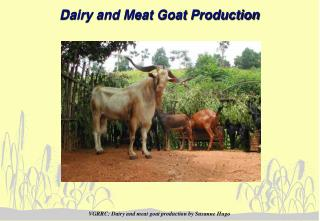 Dairy and Meat Goat Production
