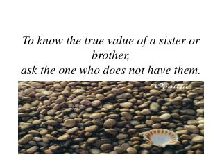 To know the true value of a sister or brother,  ask the one who does not have them.