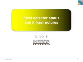 Pixel detector status and infrastructures
