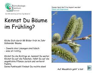 Klicke Dich durch 88 Bilder früh im Jahr blühender Bäume. - Jeweils drei Lösungen sind falsch