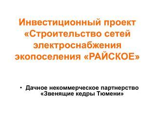 Инвестиционный проект  «Строительство сетей электроснабжения  экопоселения «РАЙСКОЕ»
