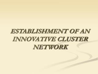 ESTABLISHMENT OF AN INNOVATIVE CLUSTER NETWORK